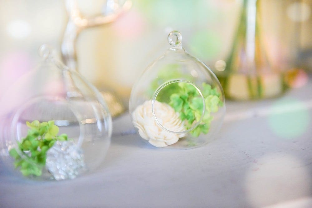 Glass Globe: $30 set of