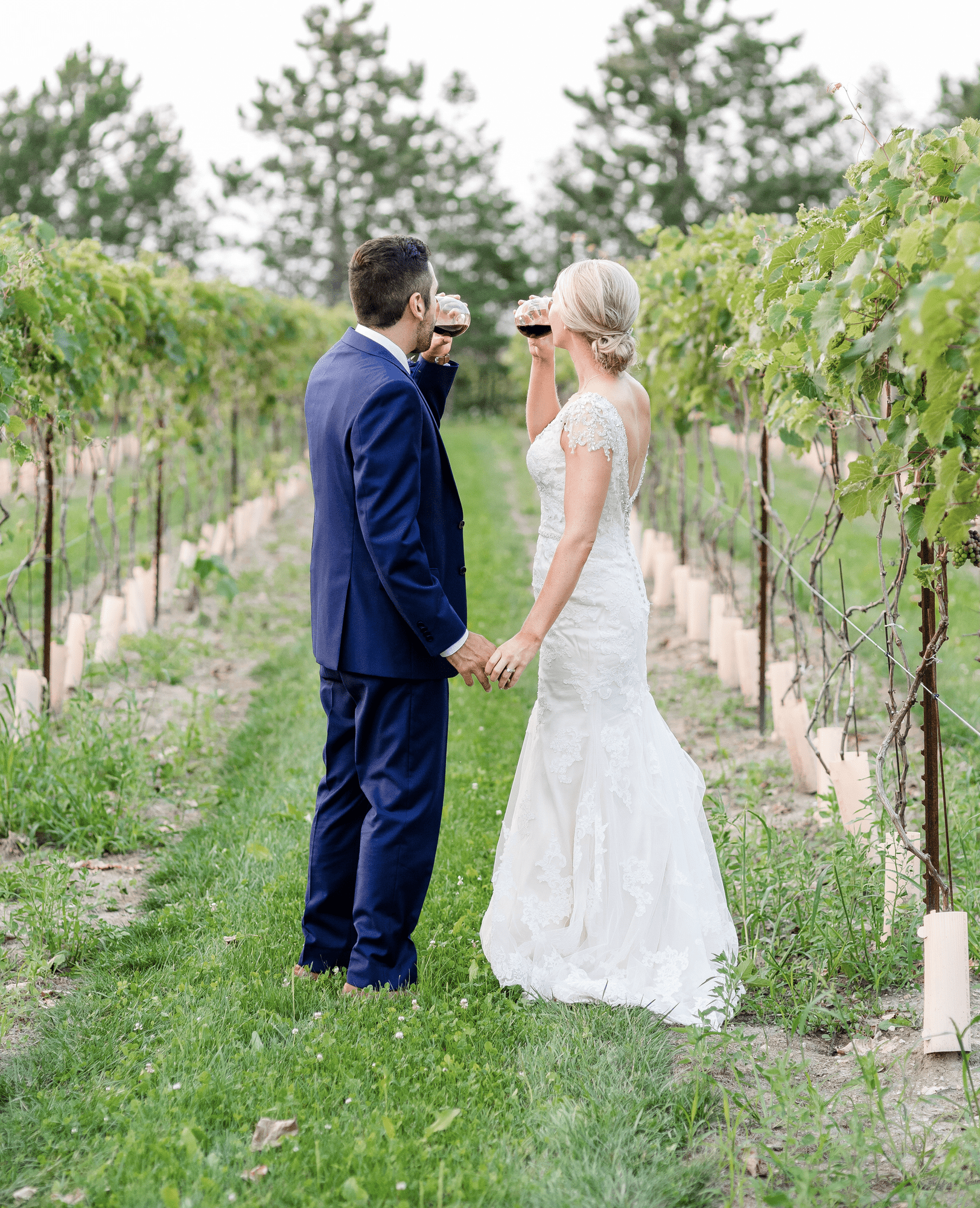 Venue: Hessenland Shatz Winery | Photo: Holly Dalton Photography
