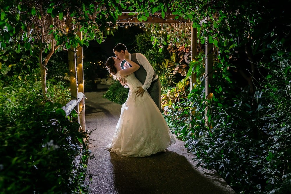Photographer: Jals Photography | Venue: Cambridge Butterfly Conservatory