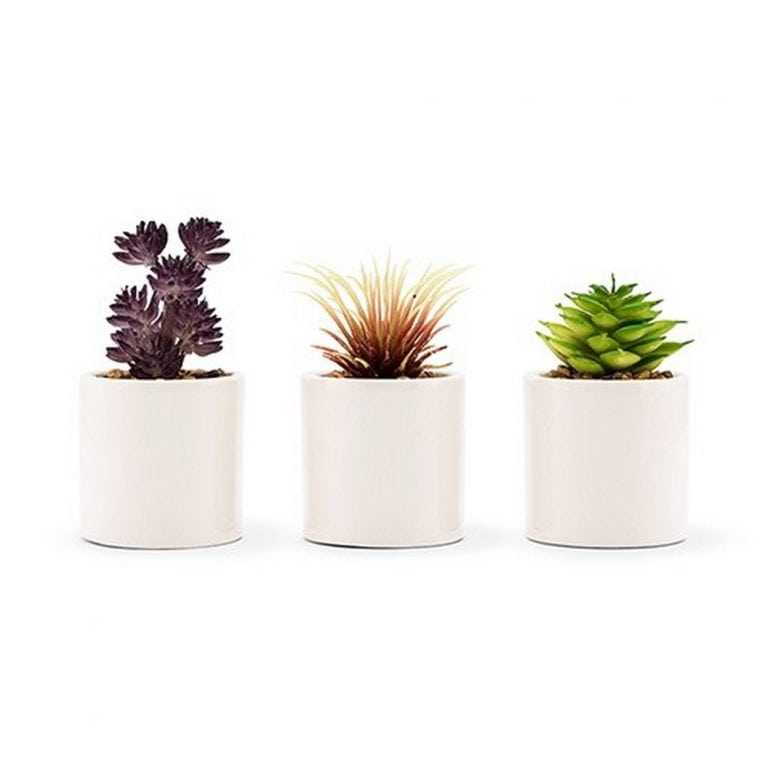 Small Faux Succulent Plants - Set Of 6 | $37.50